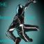 The Heavy Disc Pwner's